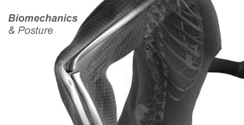 Biomechanics and Posture
